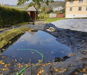 Teichsanierung in Zihlschlacht-Sitterdorf