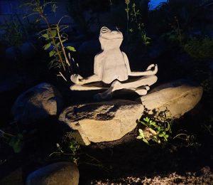 Der Yoga Frosch