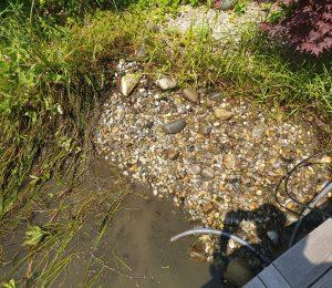 Teichsanierung Bad Saulgau