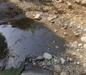 Mit Teichschlamm gefüllte Tiefwasserzone
